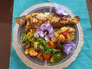 Gemüse und Fisch mit Quinoa Kruste und Avocado